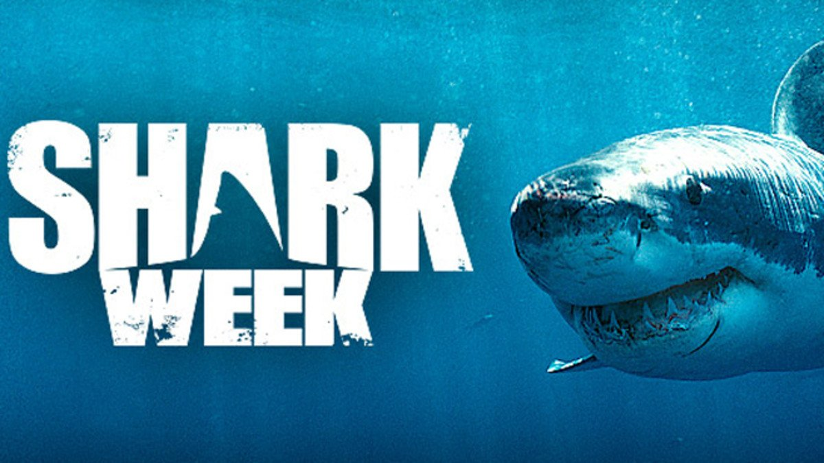La 30e édition de la Shark Week