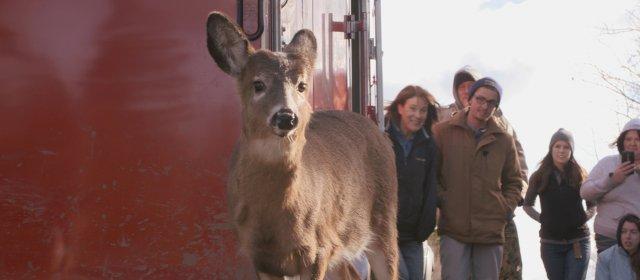 les sites de rencontres serieux gratuit red deer